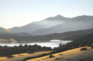 Mt. Tamalpais from Azalea Hill